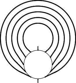 Figure 3: The General Figure with Entrance, 5 Circuits and Center