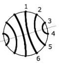 Abbildung 4: Symmetrie