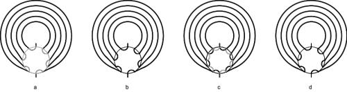 Abbildung 4: Rotationsschritte