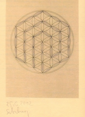 Ariadne's Thread in the Flower of Life